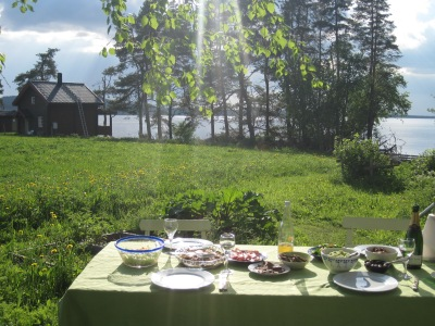 Early summer in Jämtland