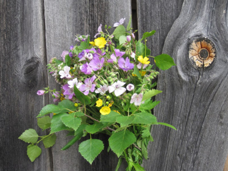 Swedish Midsummer Flowers