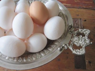 Free-range Eggs...