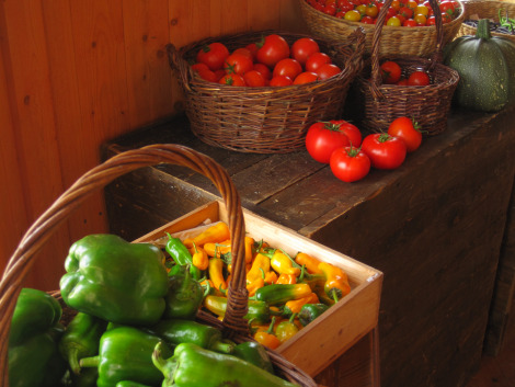 Organic grown vegetables from Ås Trädgård, Jämtland, Sweden