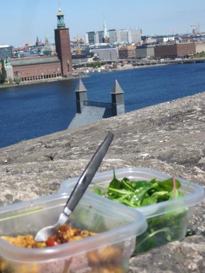 LCHF Picnic in Stockholm